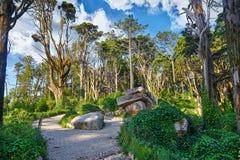Nationaler Naturpark in Sintra Portugal Stockfotografie