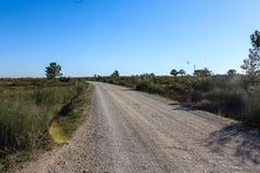 Nationaler Sumpf von Vila Real de Santo Antonio in porugal Lizenzfreie Stockfotografie