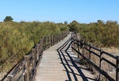 Nationaler Sumpf von Vila Real de Santo Antonio in porugal stockbild