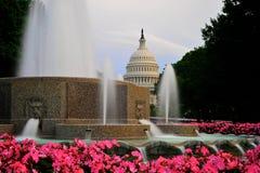 Nationales Kapitol im Washington DC Stockfotos