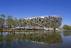 Nationales Stadion Lizenzfreie Stockfotografie