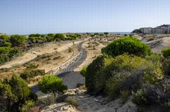 Nationalparc Dinana, södra Spanien, Europa Arkivfoto