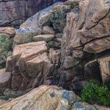 Nationalpark ©2018 Paul Light des Acadia-IMG_2971 Stockfotos