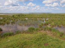 Nationalpark Ķemeri (Lettland) Stockfotos