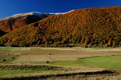 Nationalpark Abruzzo Lazio Molise Arkivbilder