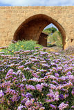 Nationalpark Achziv im West-Galiläa, Israel Stockbild