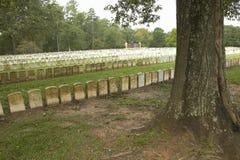 Nationalpark Andersonville eller läger Sumter, en nationell historisk plats i Georgia, plats av den förbundsmedleminbördeskrigfän arkivbilder