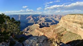 Nationalpark Arizona des Grand Canyon Stockfotos