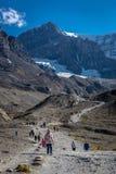 Nationalpark Banffs, Kanada - vor 15. 2017 - Touristen und Einheimische, die zum Saskatchewan-Gletscher während des Sommers am Ve lizenzfreie stockfotos