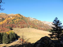 Nationalpark Bucegi Lizenzfreie Stockfotos