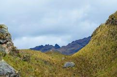 Nationalpark Cajas stockfoto