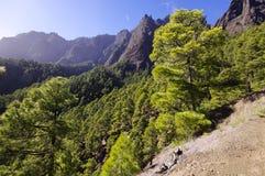 Nationalpark Caldera de Taburiente på ölaen Palma, Cana arkivfoton