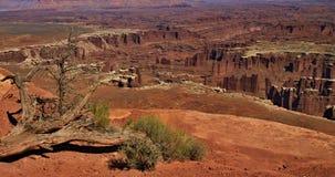 Nationalpark Canyonlands Stockbild
