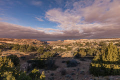Nationalpark Canyonlands Stockfoto