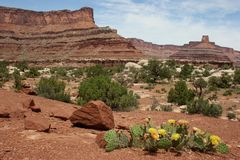 Nationalpark Canyonlands in Utah Lizenzfreies Stockfoto