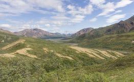 Nationalpark Denali Stockfoto