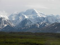 Nationalpark Denali - Alaska Stockbild