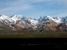 Nationalpark Denali - Alaska Stockfotos