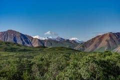 Nationalpark Denali in den Alaska-Vereinigten Staaten von Amerika lizenzfreie stockbilder