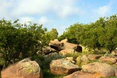 Nationalpark der Großen Ebenen stockbild