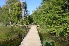 Nationalpark der Plitvice Seen Lizenzfreies Stockfoto