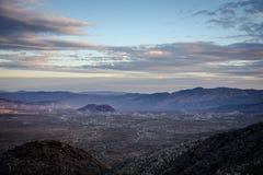 Nationalpark des Joshua-Baums Stockbilder