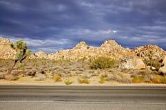 Nationalpark des Joshua-Baums Lizenzfreie Stockfotos