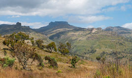 Nationalpark des Mount Elgon, Kenia Stockfotografie