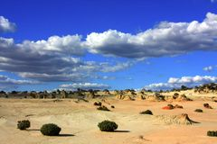 Nationalpark des Mungos, NSW, Australien Lizenzfreies Stockbild
