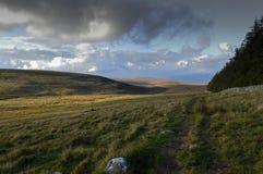 Nationalpark Devon Dartmoor Stockfotografie