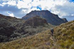 Nationalpark EL Cajas, Ecuador, Spur, wandernd lizenzfreies stockbild