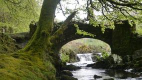 Nationalpark Exmoor Lizenzfreies Stockbild