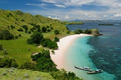 nationalpark för floresindonesia komodo Arkivfoto