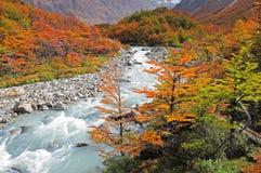 Nationalpark för Los Glaciares. Arkivfoton