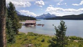 nationalpark för maligne för Kanada jasperlake Royaltyfri Foto
