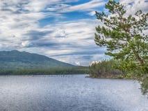 Nationalpark för rvi för Paanajï ¿ ½ i Karelia, Ryssland Sommarvattenlandskap vita nätter Royaltyfri Fotografi