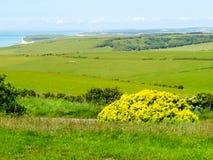 Nationalpark för sju systrar, östliga Sussex, England arkivbild