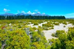 Nationalpark Fiordland, Neuseeland, lizenzfreie stockfotografie