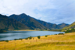 Nationalpark Fjordland stockbild