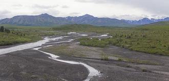 Nationalpark-Fluss Denali Lizenzfreie Stockfotos