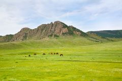 Nationalpark Gorkhi-Terelj bei Ulaanbaatar, Mongolei Lizenzfreie Stockbilder