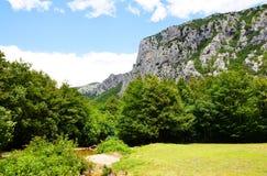 Nationalpark großer Paklenica-Schlucht in Kroatien Lizenzfreies Stockbild