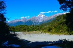 Nationalpark Hollyford Fiordland lizenzfreies stockfoto
