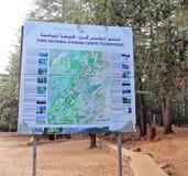 Nationalpark Ifrane lizenzfreie stockfotos