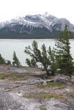 Nationalpark Kanada Bergabraham Seebanffs Stockbild