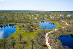 Nationalpark Kemeri Lizenzfreie Stockfotos