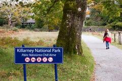 Nationalpark Killarneys Stockfotografie
