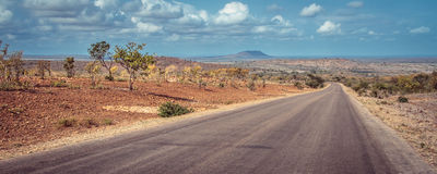 Nationalpark Kruger Lizenzfreie Stockfotos