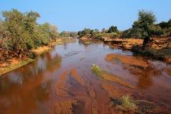 Nationalpark-Landschaft Kruger Stockbilder