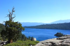 Nationalpark-Landschaft Lake Tahoe Stockfotografie